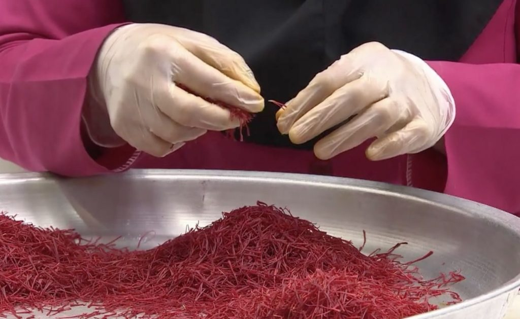 saffron producer in iran
